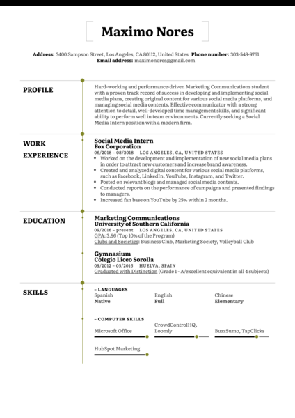 Social Media Intern Resume Example
