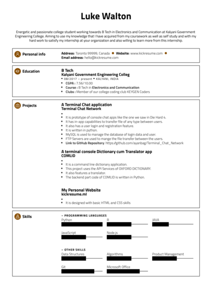 Software Engineer Intern at Google Resume Sample