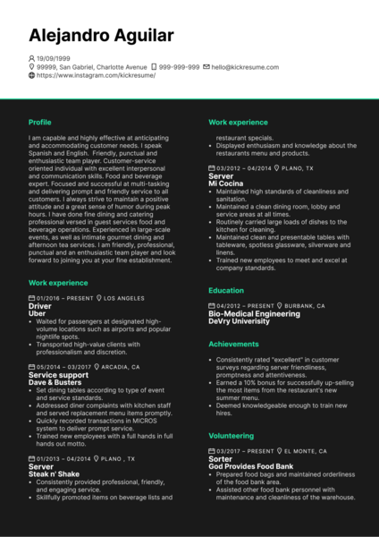 Service Support at Entertainment Business CV Example