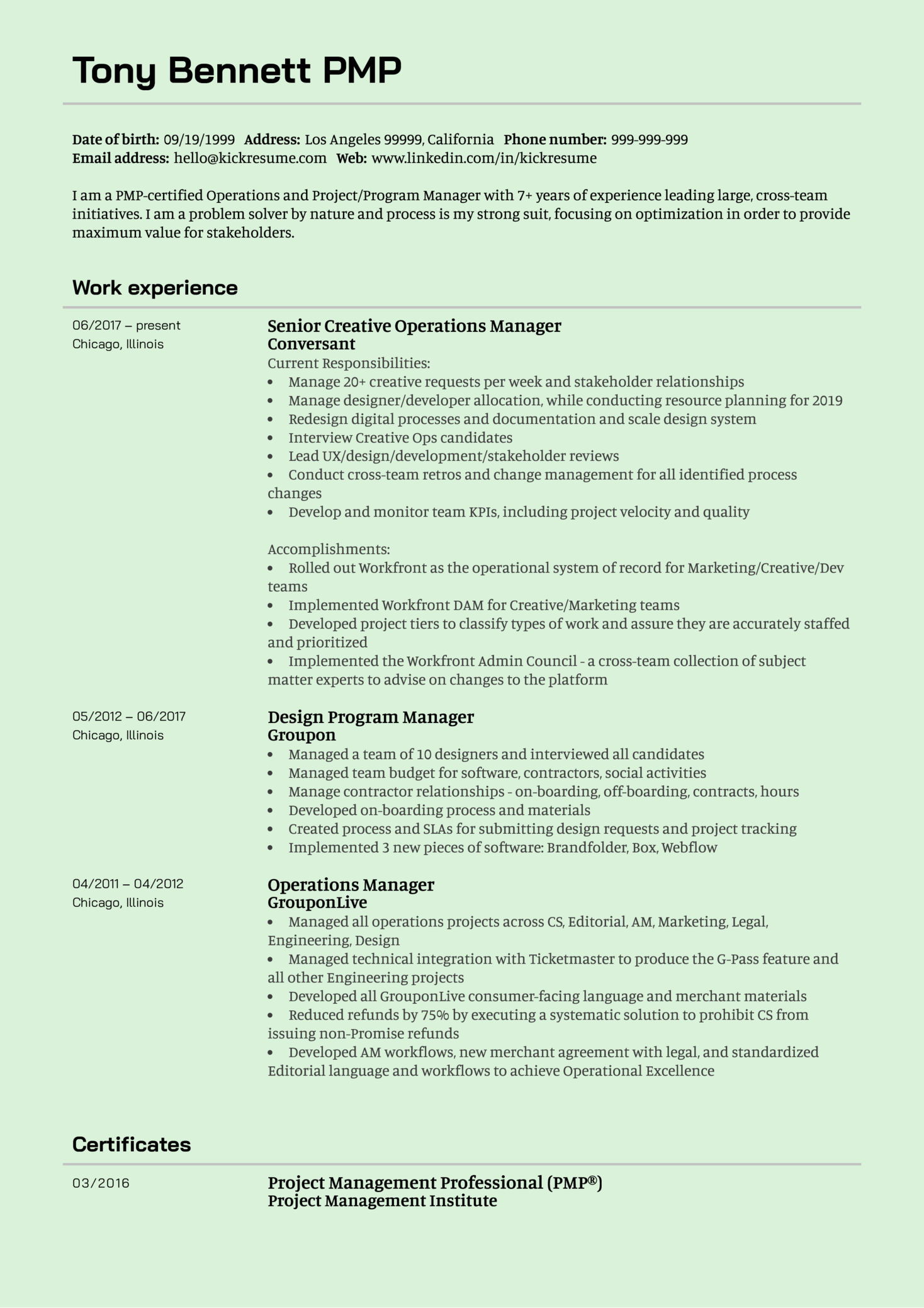 Senior Creative Operations Manager CV Example