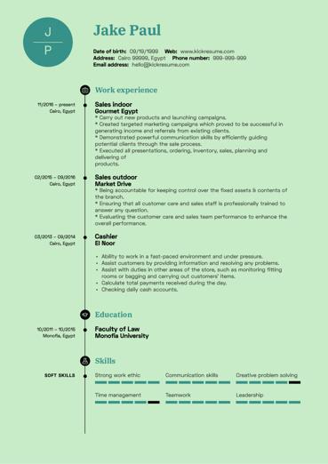 Sales Representative CV Example