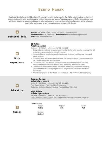 3D Artist Resume Sample