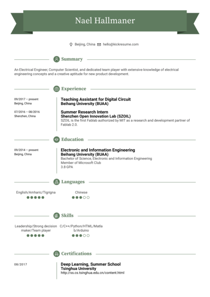 Electrical engineer, Teaching assistant resume sample