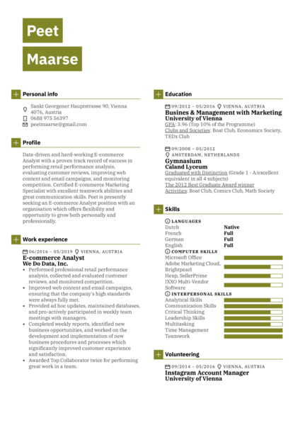 E-commerce Analyst Resume Sample