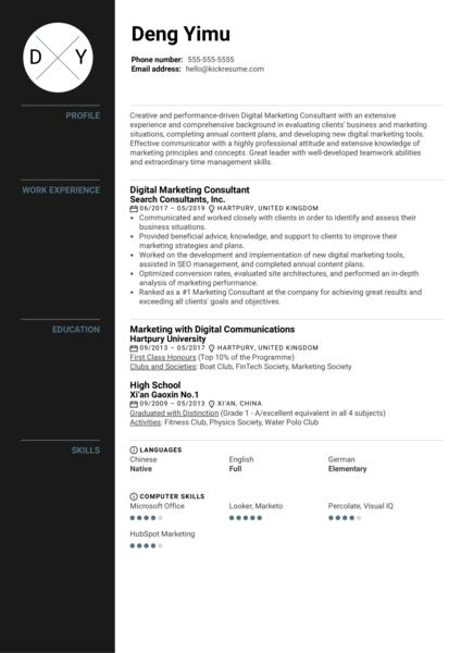 Digital Marketing Consultant Resume Sample