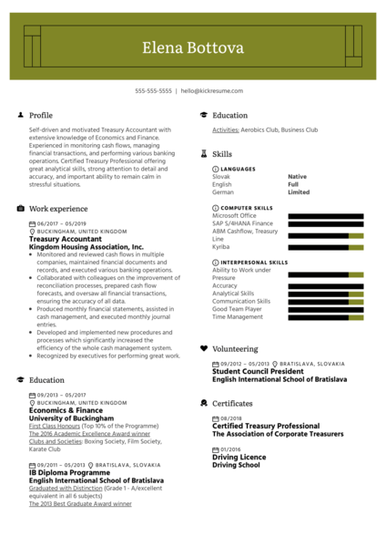 Treasury Accountant Resume Example
