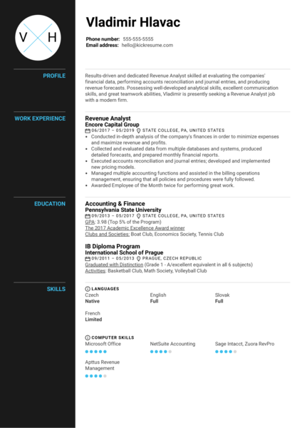 Revenue Analyst Resume Sample