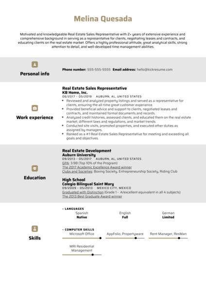 Real Estate Sales Representative Resume Example