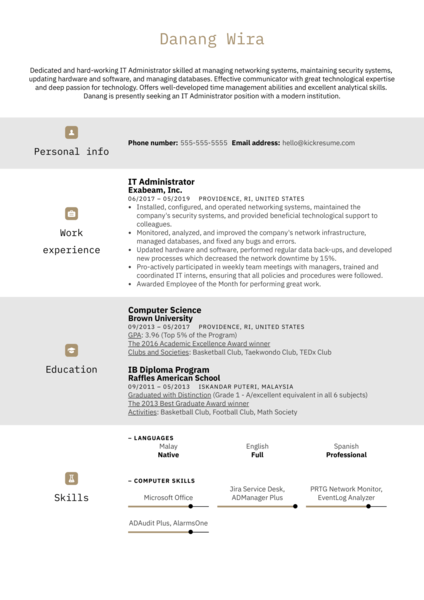 IT Administrator Resume Example