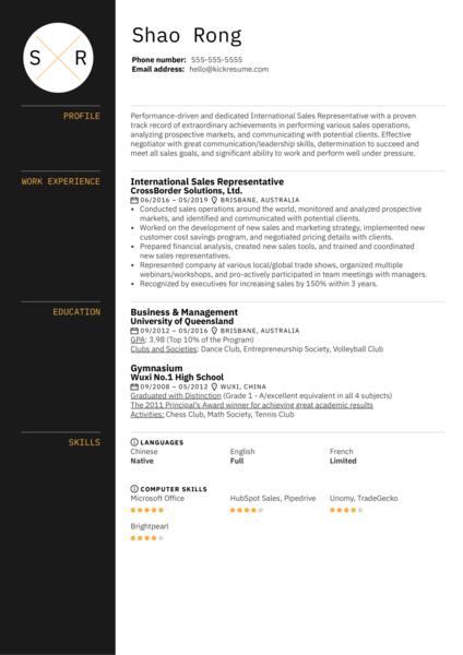 International Sales Representative Resume Sample