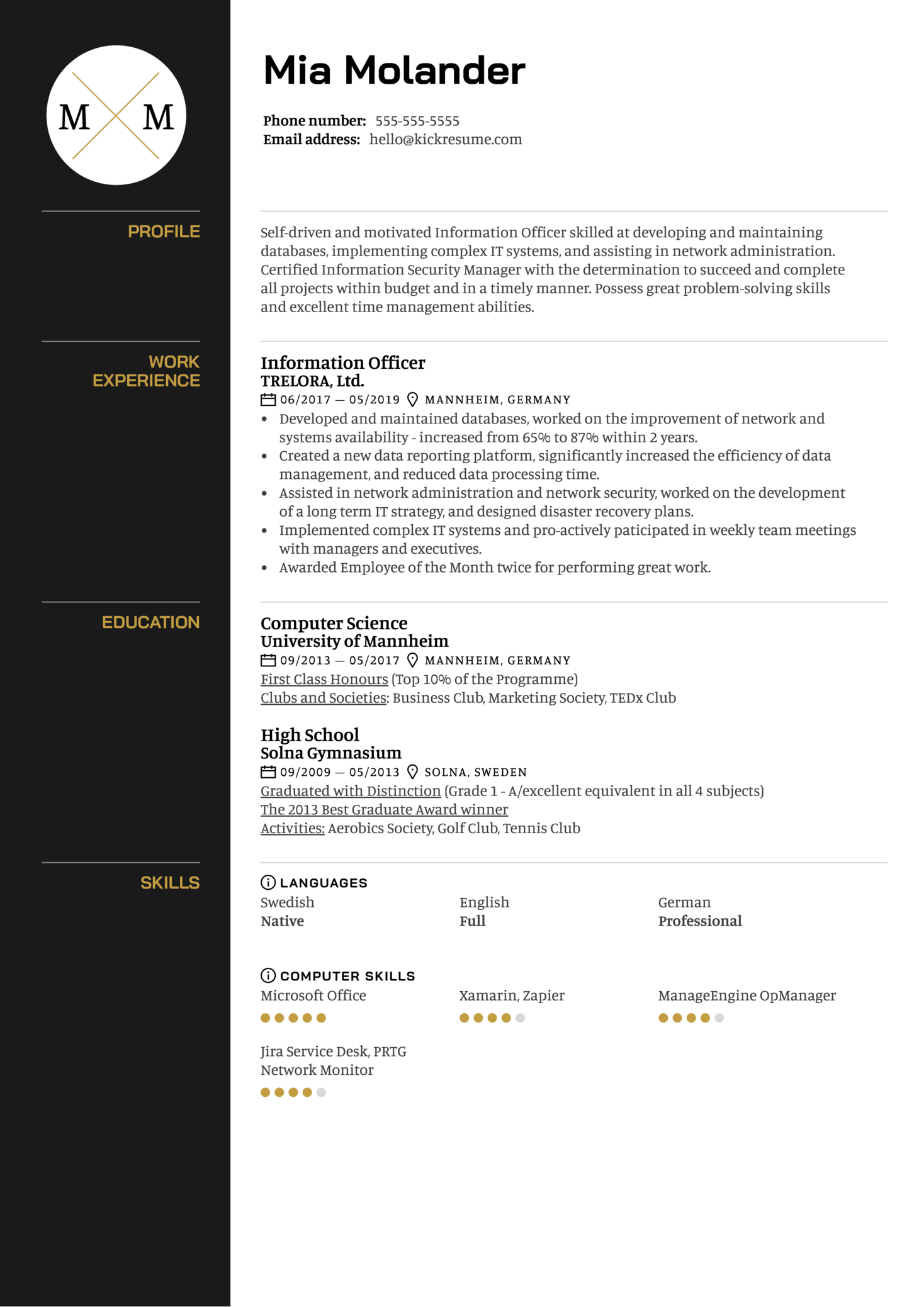 Information Officer Resume Template