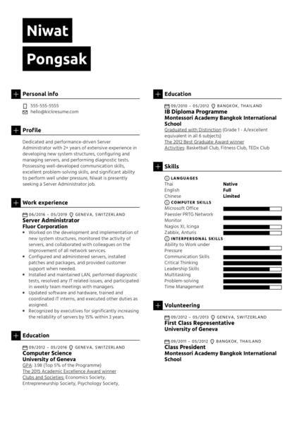 Server Administrator Resume Sample