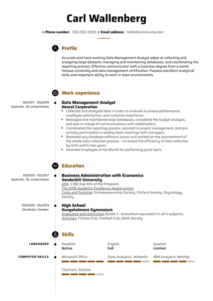 Data Management Analyst Resume Example