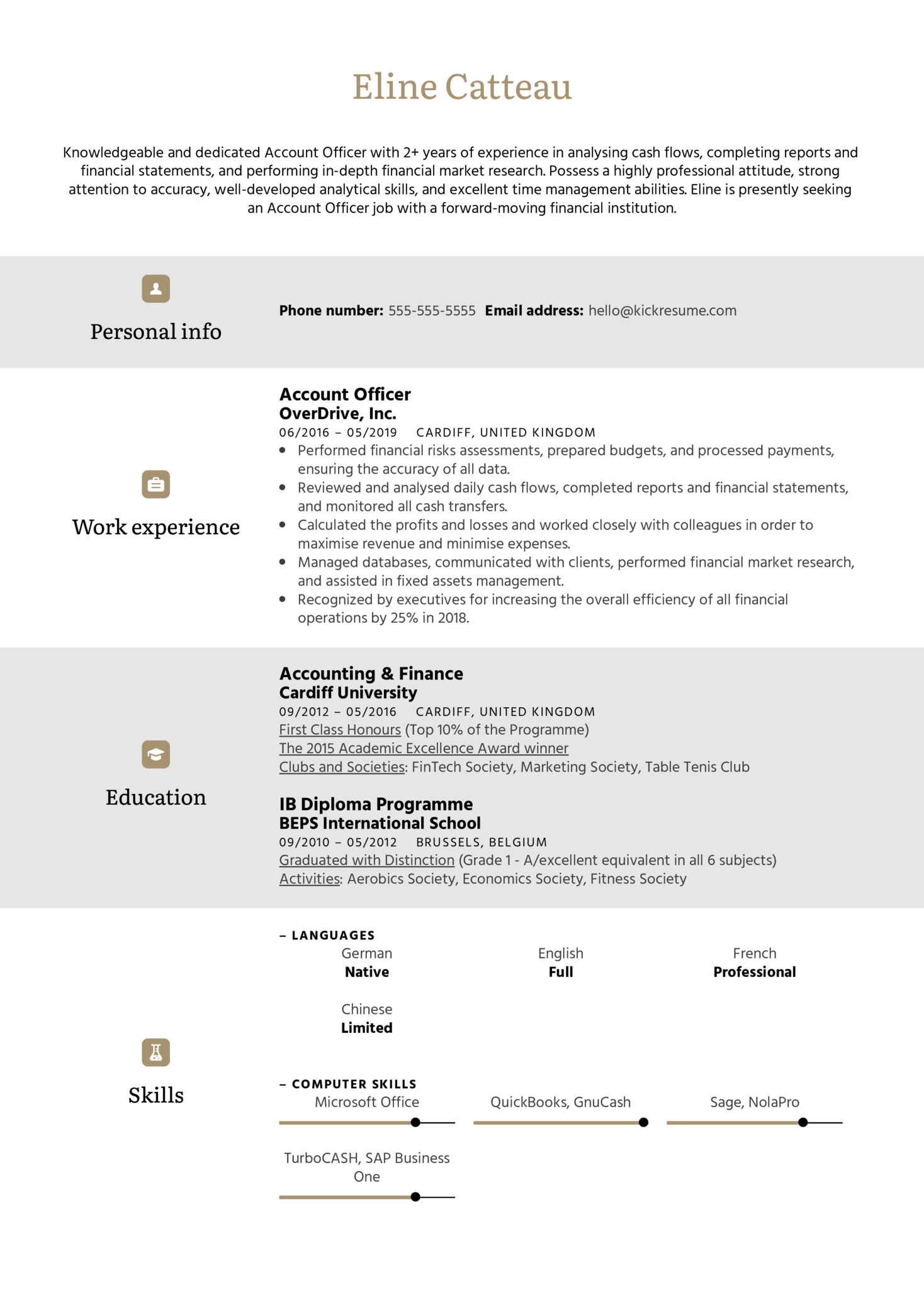 Account Officer Resume Sample
