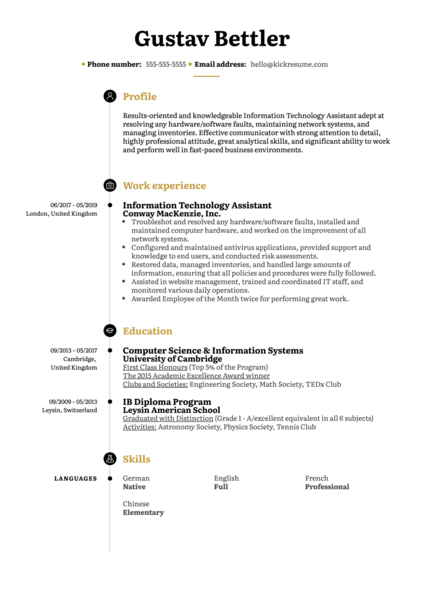 Information Technology Assistant Resume Sample