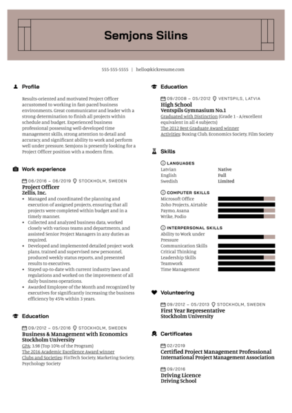 Project Officer Resume Example