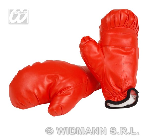 BOXING GLOVES PROF - CHILD SIZE