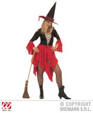 WICKED WITCH COSTUME (dress hat)