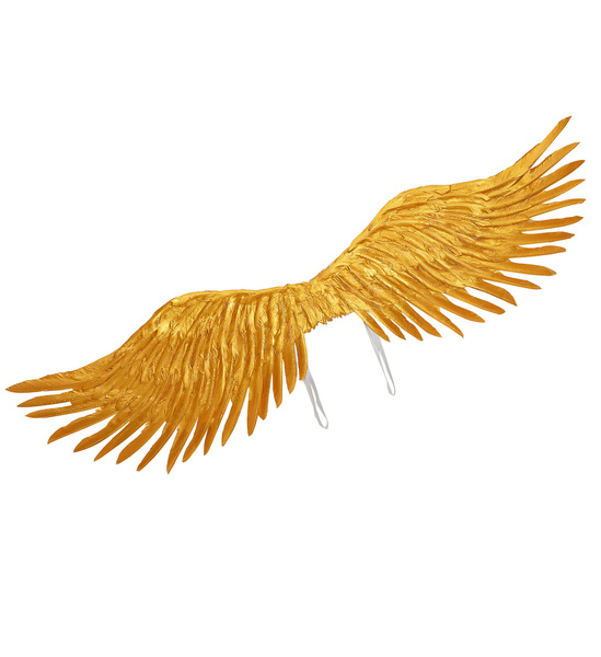 GOLD FEATHERED WINGS 100x25cm