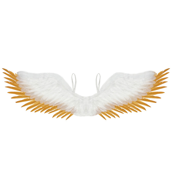 WHITE & GOLD FEATHERED WINGS 100x25cm
