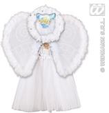 Angel Sets