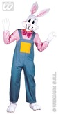 Country Rabbit Adult Costume
