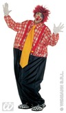 Clown Adult Costume (One Size)