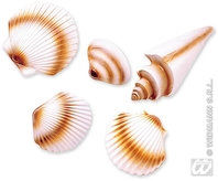 3d Seashells Plastic
