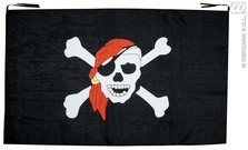 Pirate Flag With Skull