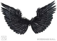 Black And Silver Feathered Wings