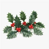 Holly 5 Pieces Cake Decoration