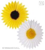Paper Fan Daisy Sunflower 50cm