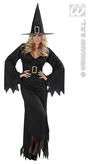 Elegant Witch Adult Costume