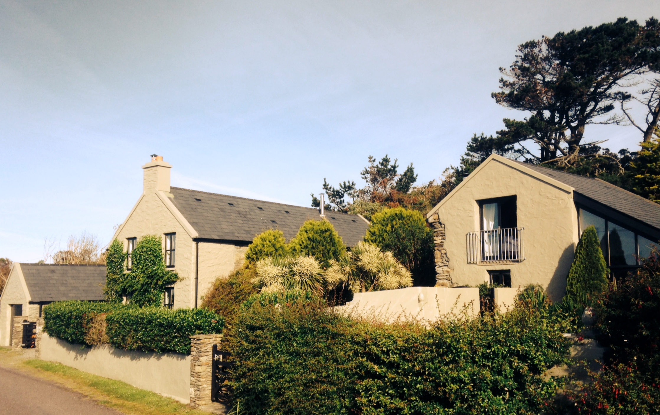 The Artists' Cottage & Studio - Gallery