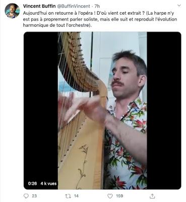 Le harpiste confiné