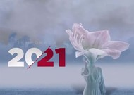 Français - Le Teatro Real varie les plaisirs en 2020-2021