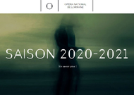Français - 2020-2021, saison de la transfiguration pour Nancy