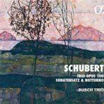 Le Trio Busch dans Schubert, en dignes héritiers de leurs aînés