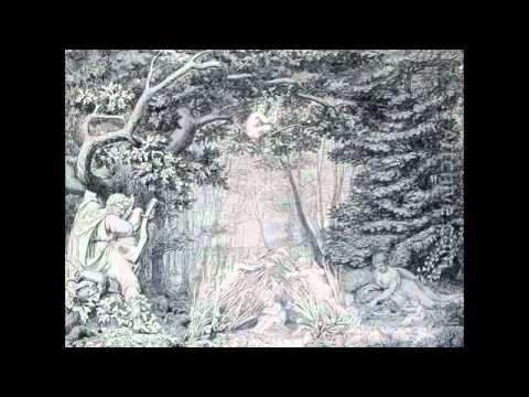 Schubert Impromptu in E flat major D 899 (Alexander Lonquich)