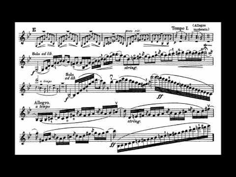 Bruch, Max mvt1+2(begin) 1st violin concerto