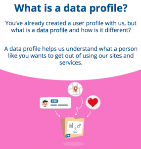 Screenshot of the What is a data profile screen