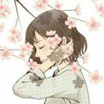 Image de profil de Miss Echoes