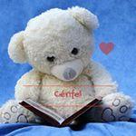 Image de profil de Cerifel