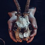 Image de profil de Jonathan Aubé
