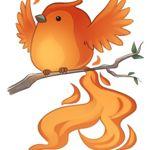 Image de profil de Phoenyx