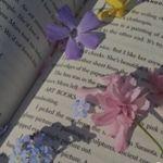 Image de profil de Alyssa29
