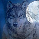 Image de profil de Pilgrimwen