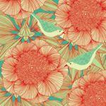 Image de profil de Dandelion