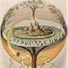 Image de profil de L'Arbre