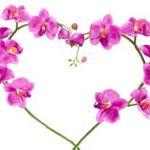 Image de profil de 1410834308963203